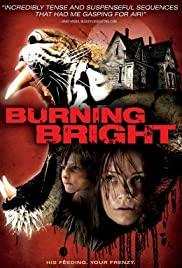 Kaplan Kapanı – Burning Bright izle